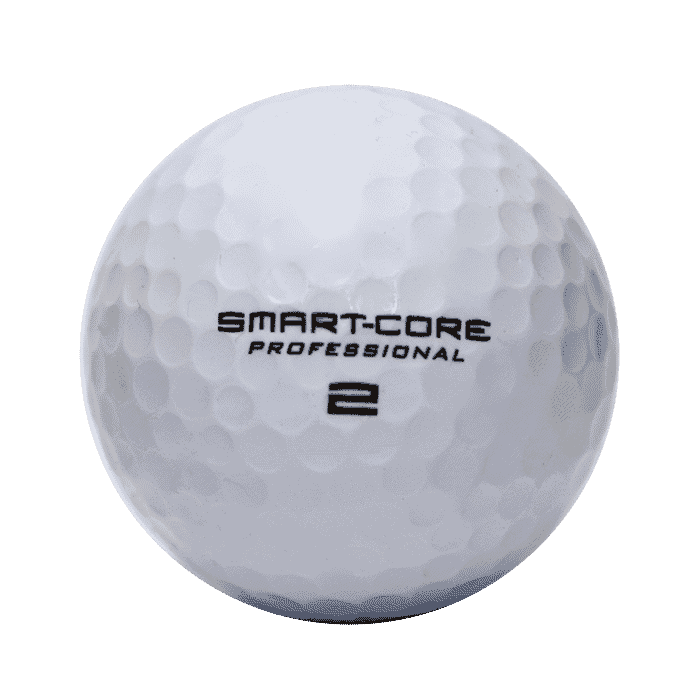 Wilson Smartcore Professional